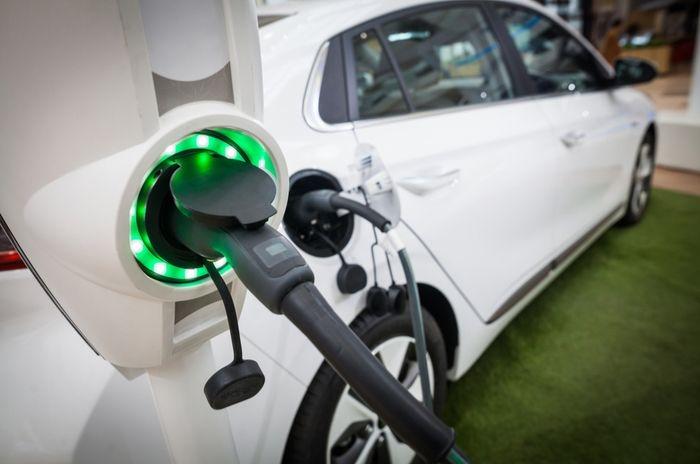 Les matriculacions de vehicles electrificats, híbrids i de gas van créixer un el 31,5% a l'agost