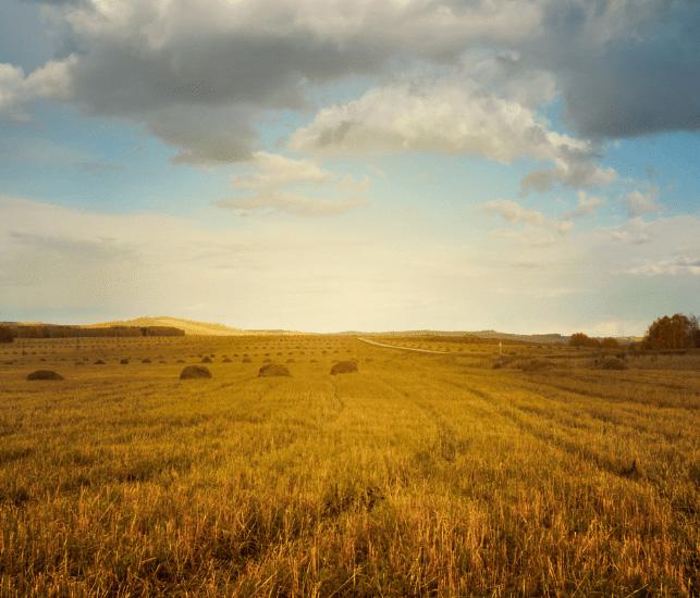 Les matriculacions de tractors agrícoles van créixer un 2,2% a l'octubre