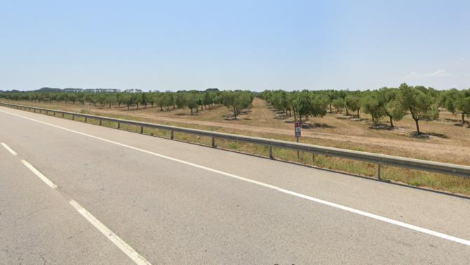 Una persona ha mort atropellada a la C-31 a Siurana (Alt Empordà)